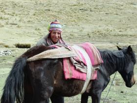 esteban_caballo